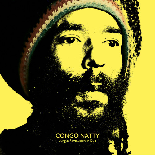 Jungle Revolution in Dub - Congo Natty
