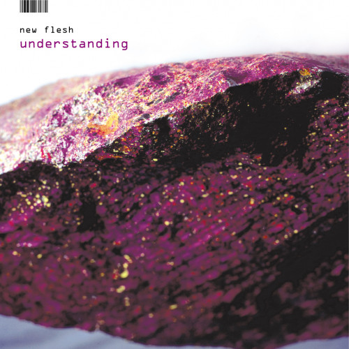 Understanding - New Flesh
